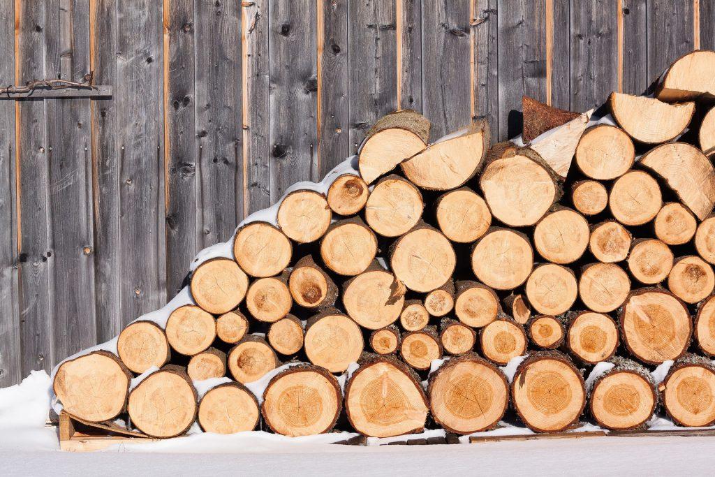 בולי עץ לנגרות